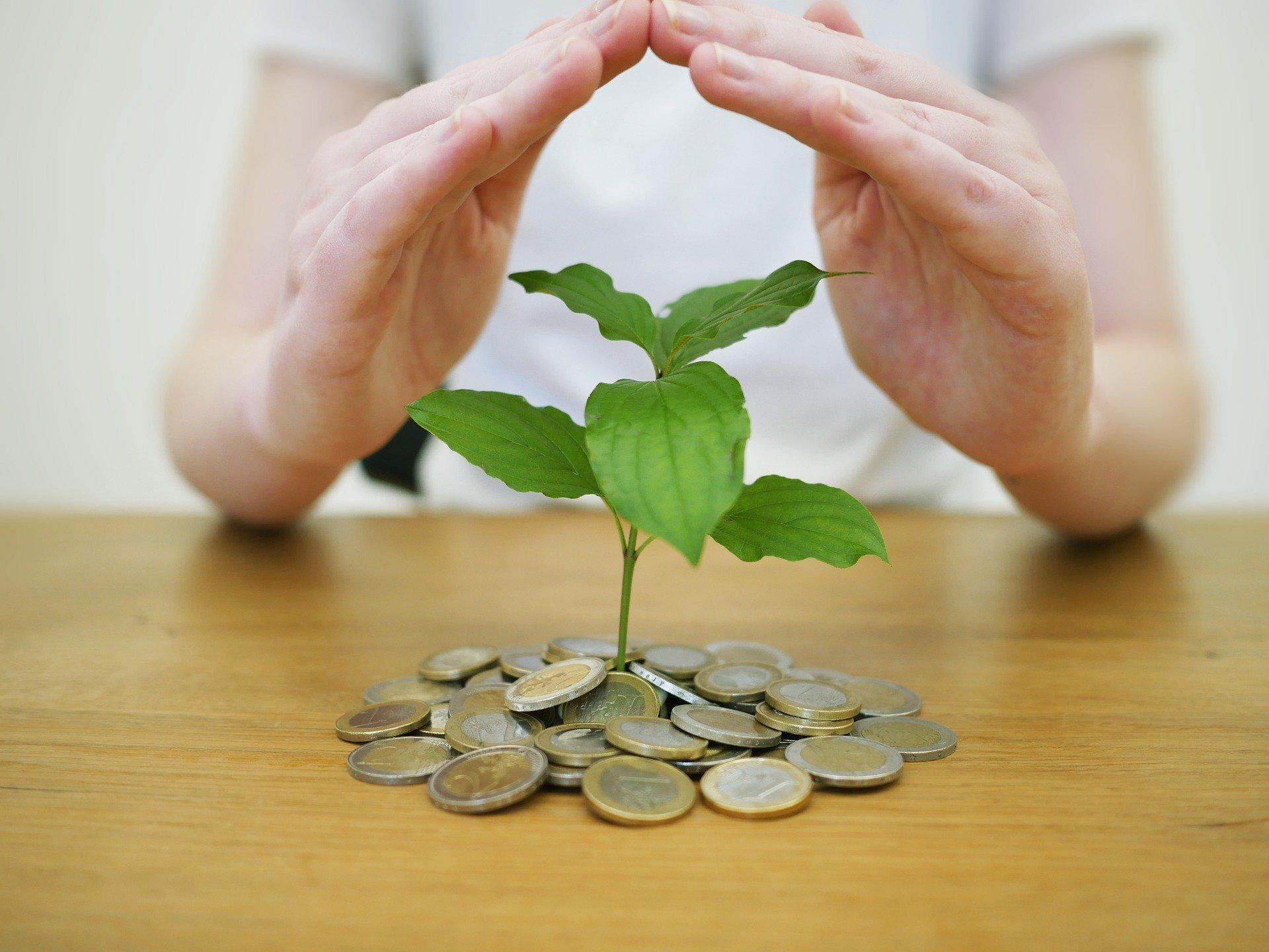 Schuldner- & Insolvenzberatung