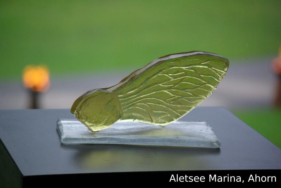 Aletsee Marina Ahorn 2