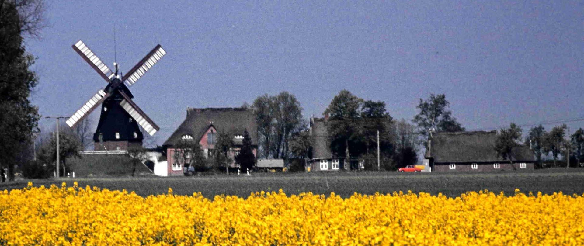 Geschichte von Greve's Mühle