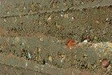 Detail Stampflehmwand