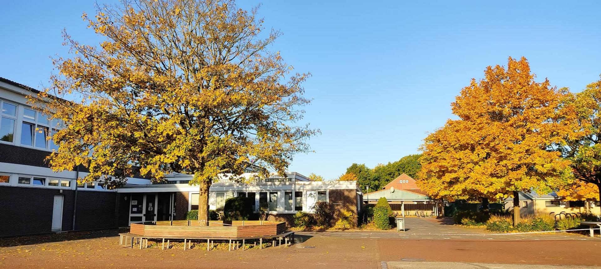 Schule im Herbst