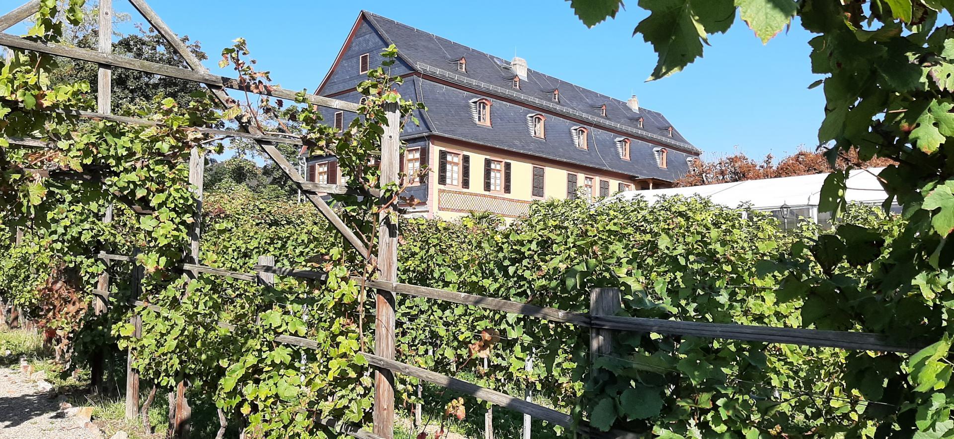 Brentanohaus