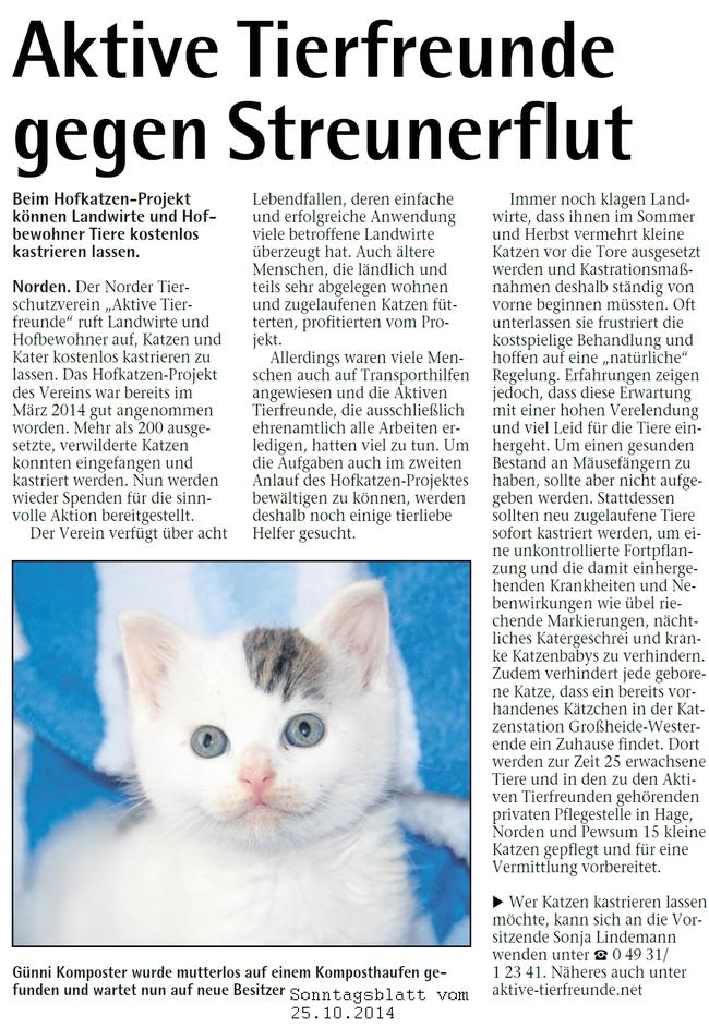 Tierfreunde gegen Streunerflut