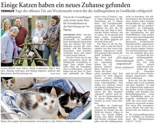 Einige Katzen haben ein neues Zuhause gefunden.