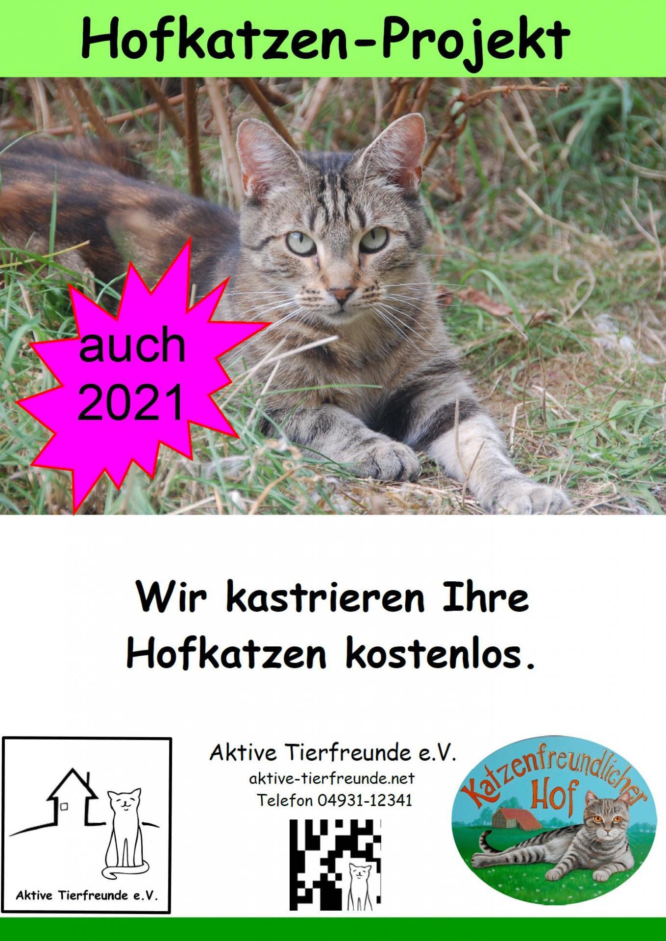 Hofkatzenprojekt 2021
