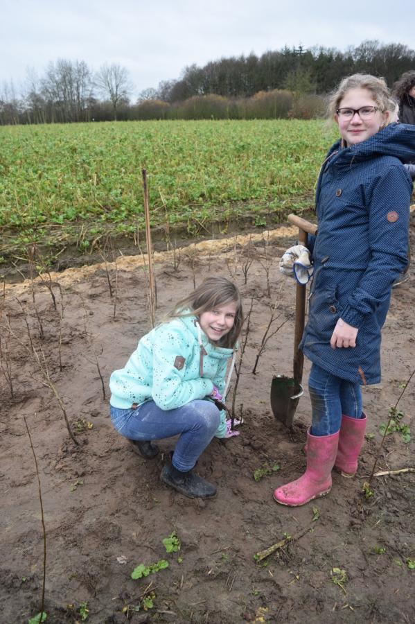 Eindrücke vom Projekt Waldrand in Pestrup