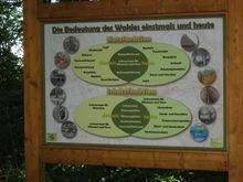 "Waldlehrpfad im ""Grasholz"""