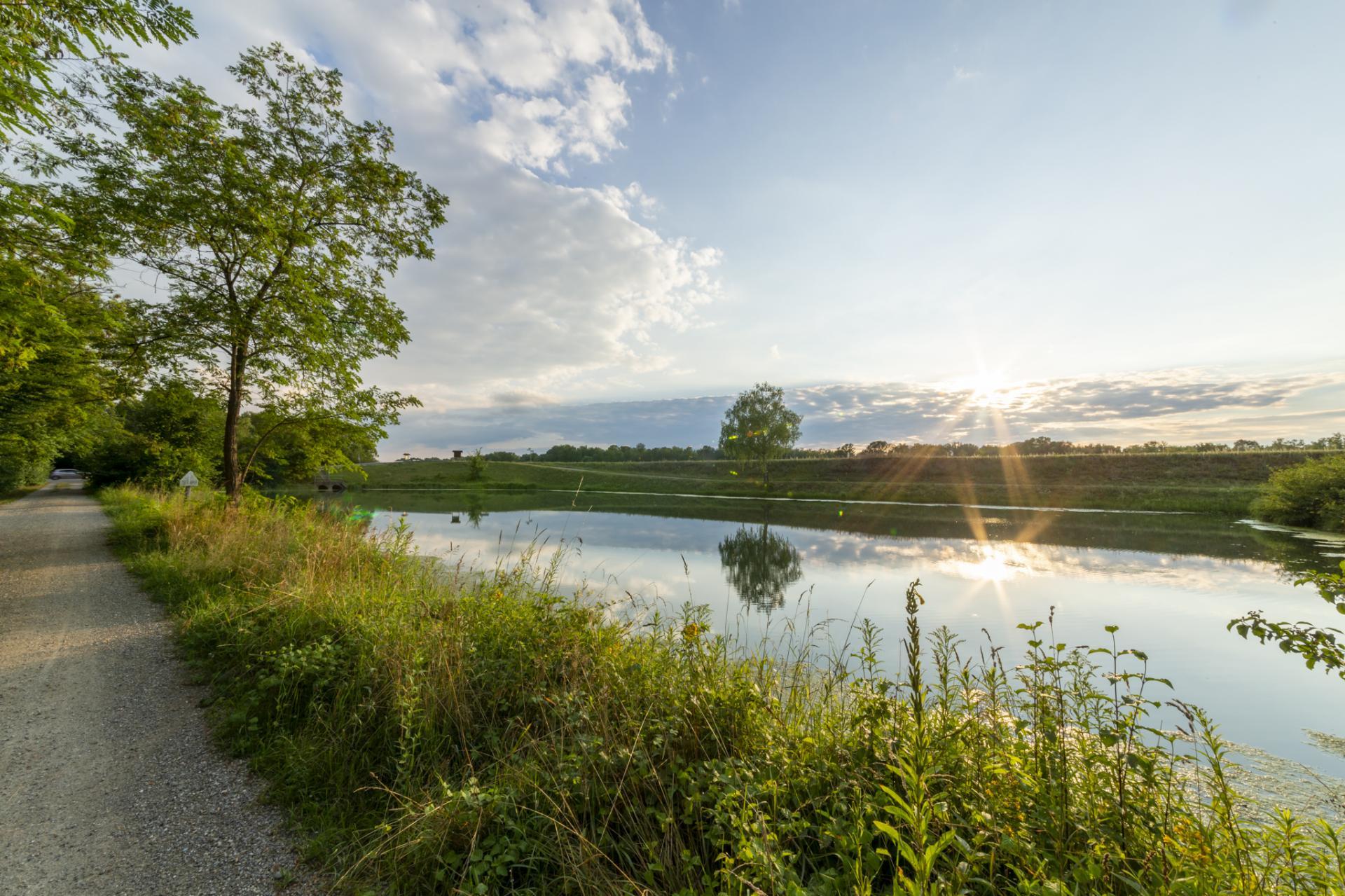 Rheinaue2