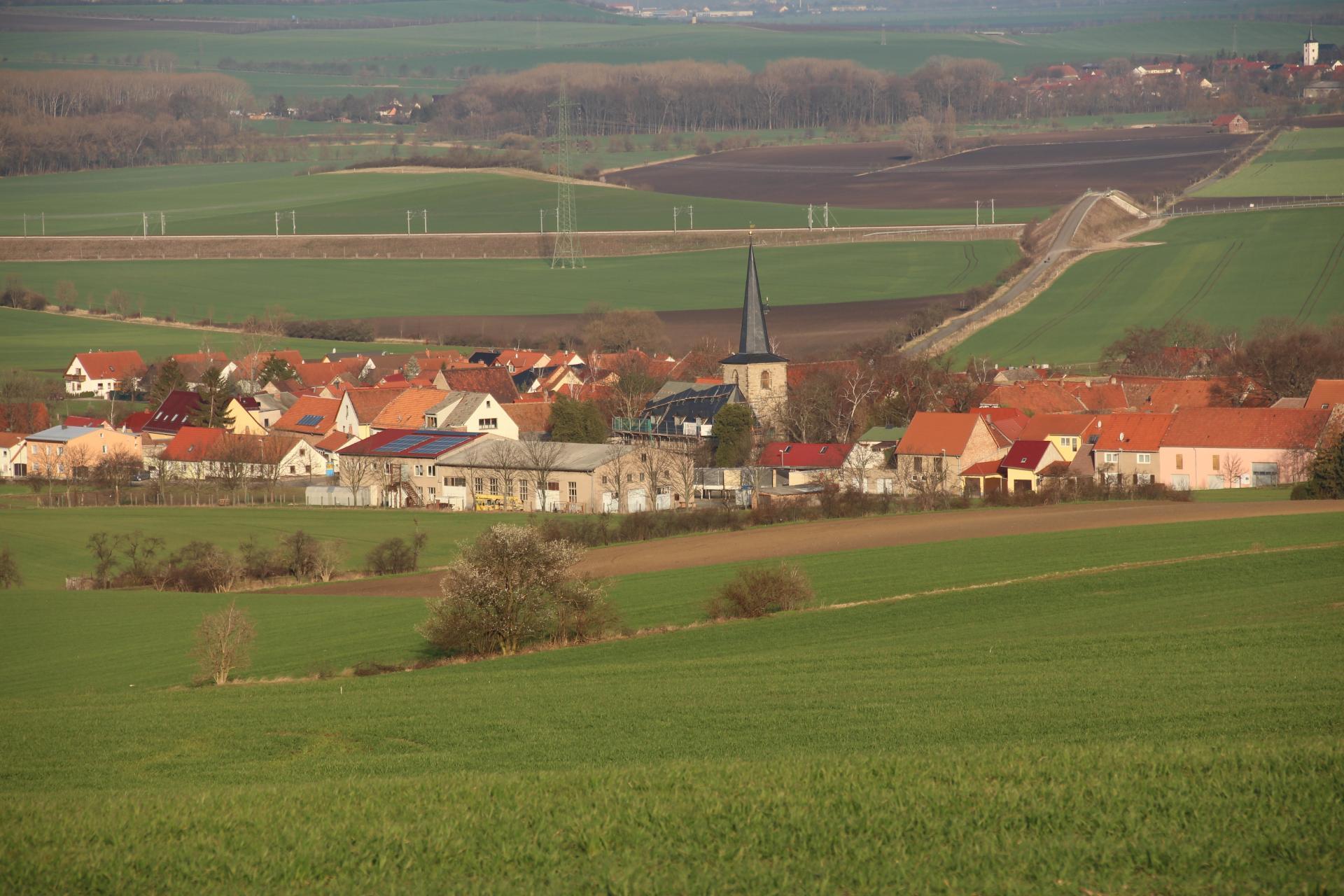 Ollendorf 5