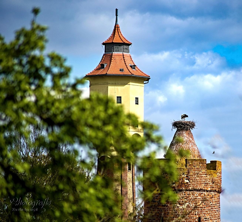 Wasserturm und Pulverturm mit Storchennest (Foto: Kerstin Sprengel)