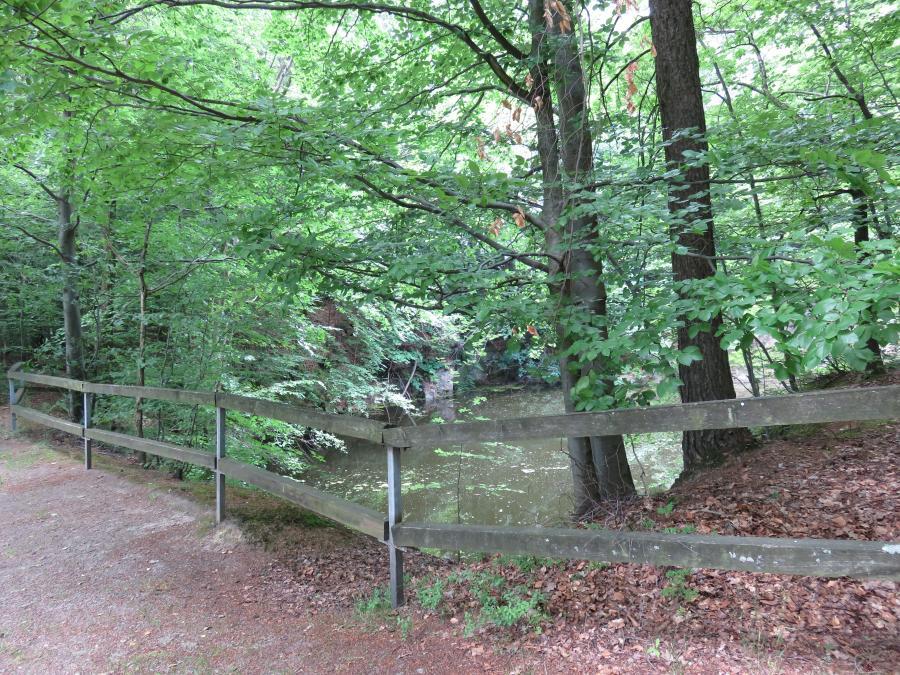 Leuner Steinbruch