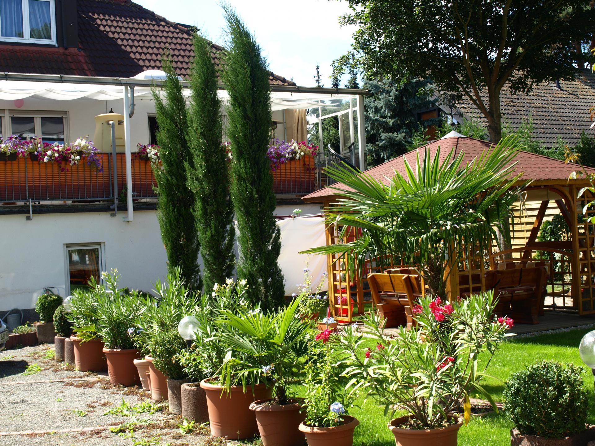 Garten mit Zypressen