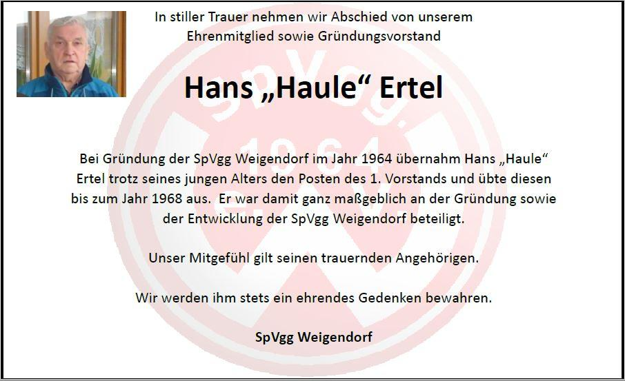 Hans Haule Ertel