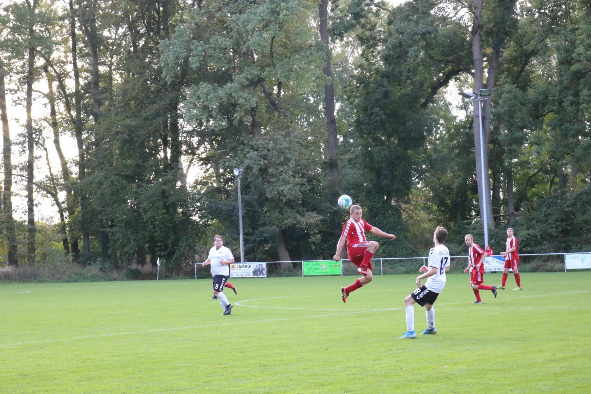 HSV II gegen SpG