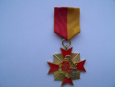 Ehrenkreuz KFV Augsburg Gold