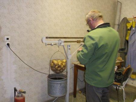 Kartoffel 3