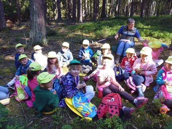 Besuch im Wald