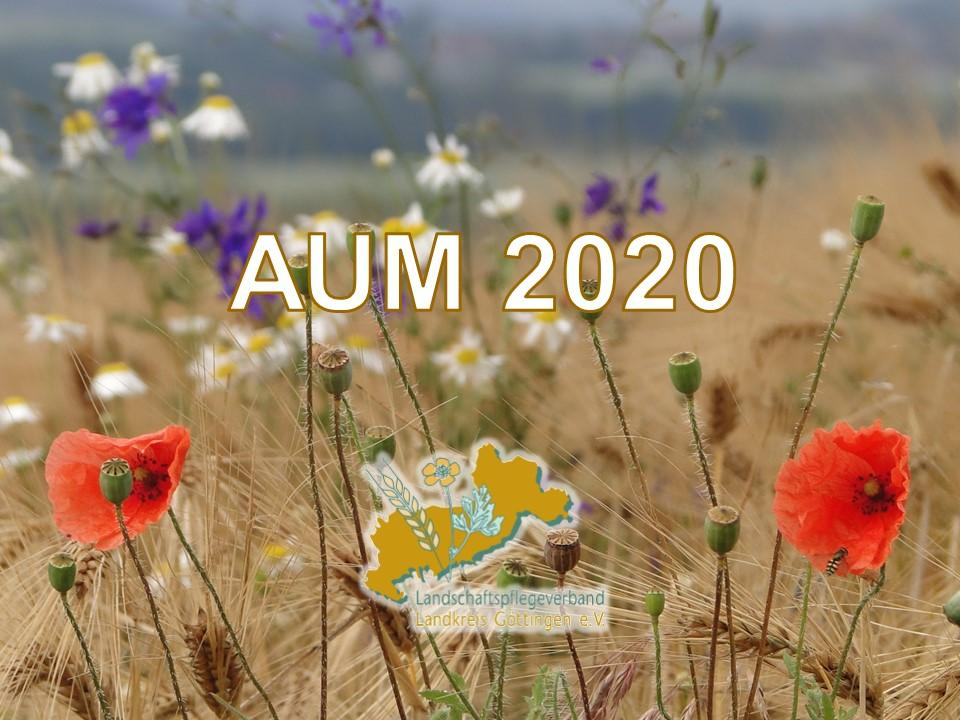 AUM 2020