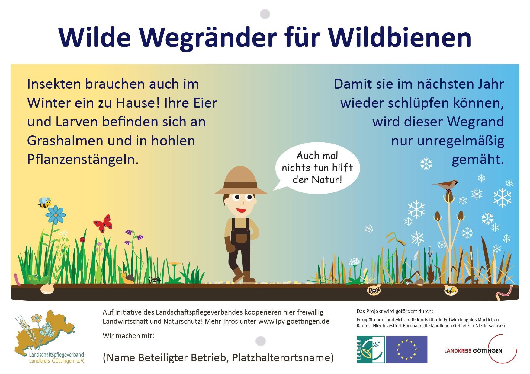 Wilde Wegränder für Wildbienen