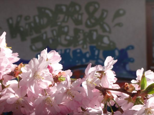 Blühendes Jugendhaus