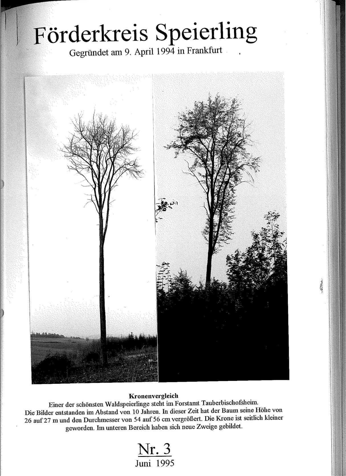 Corminaria Heft Nr. 3