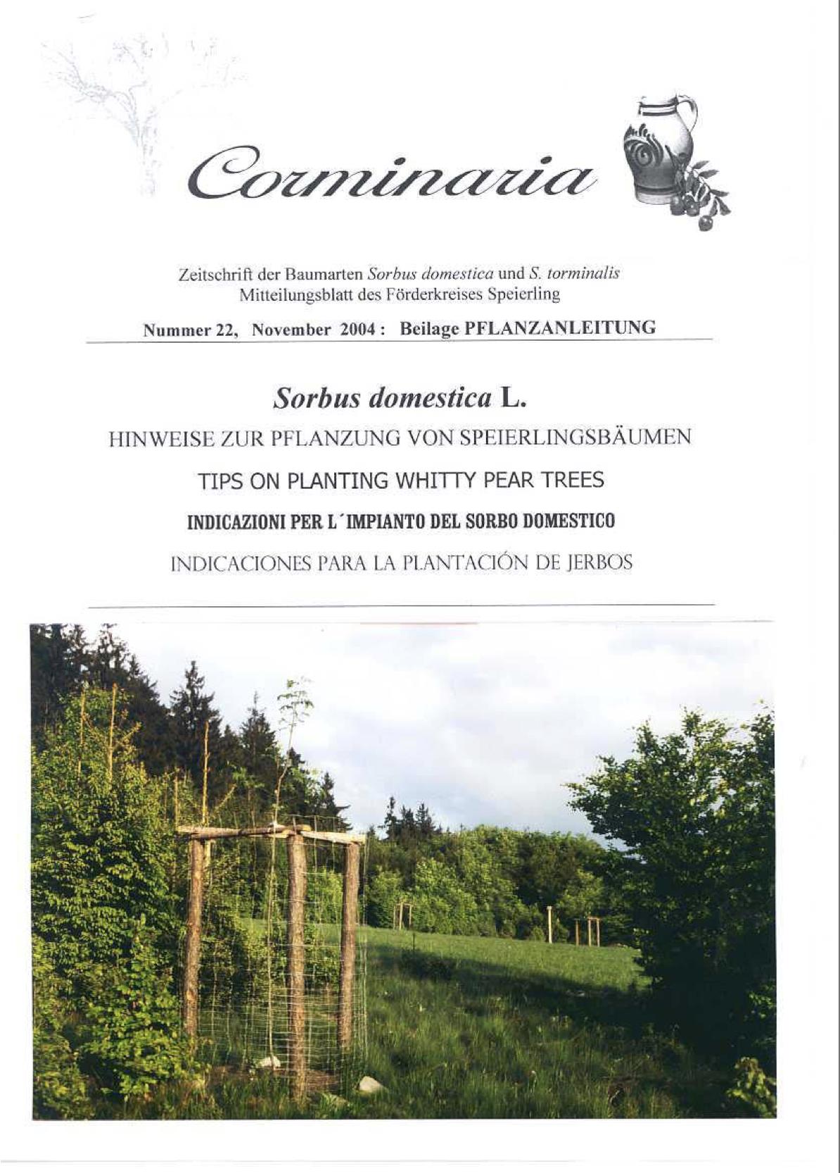 Corminaria Heft Nr. 23