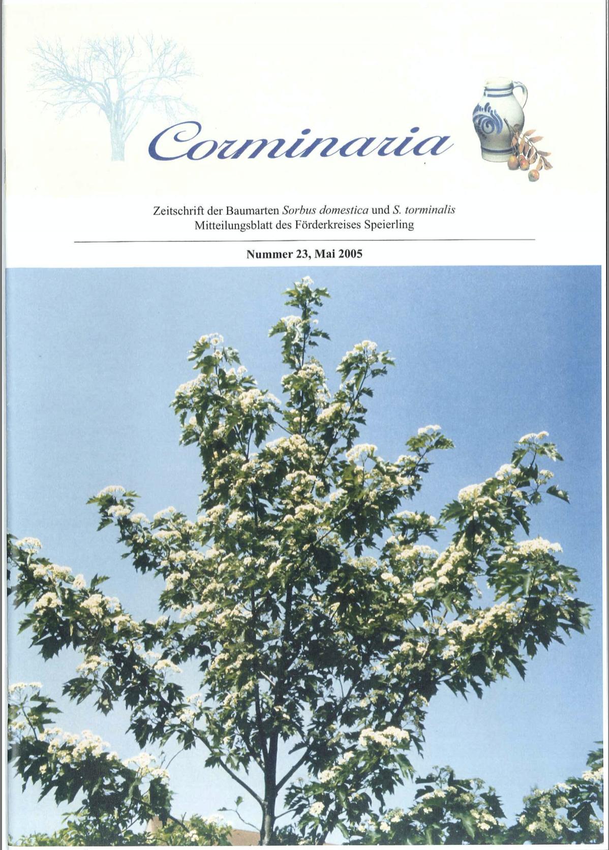 Corminaria Heft Nr. 24