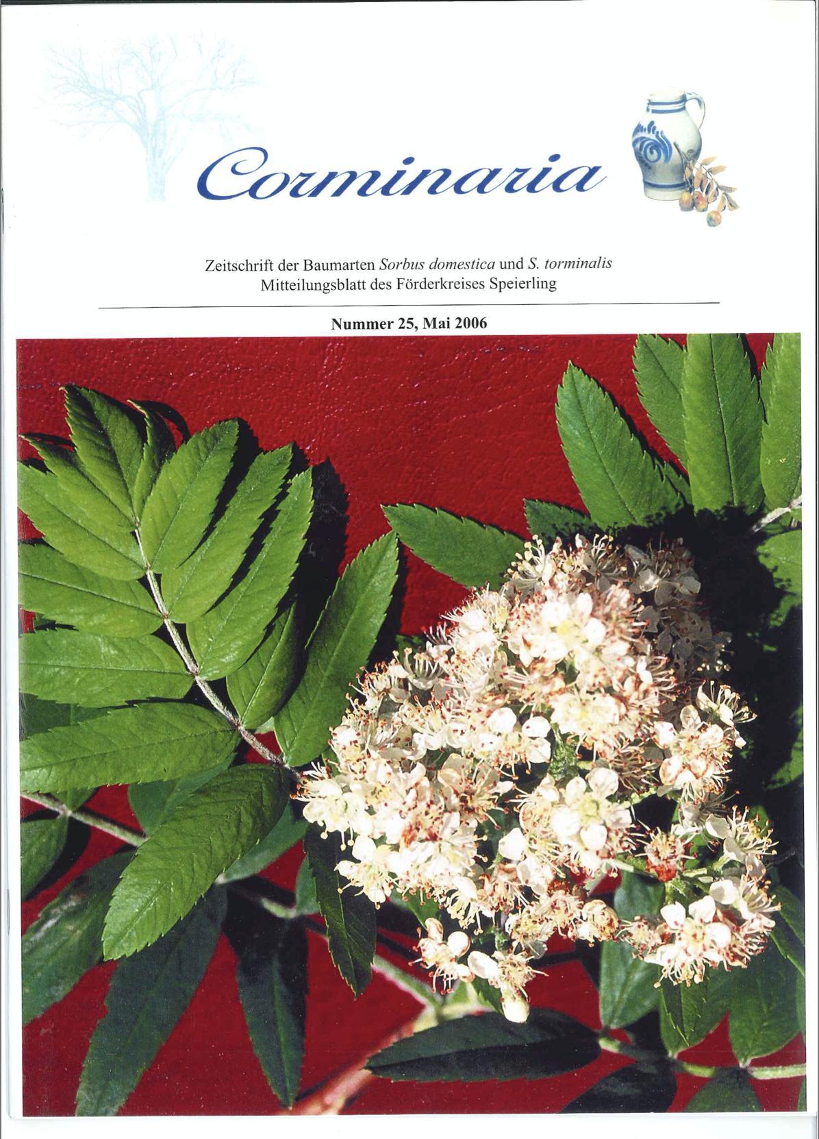 Corminaria Heft Nr. 26