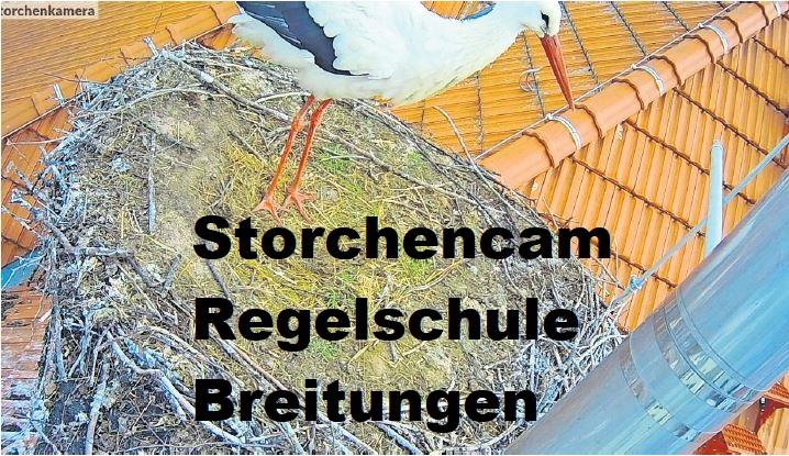 Storchencam