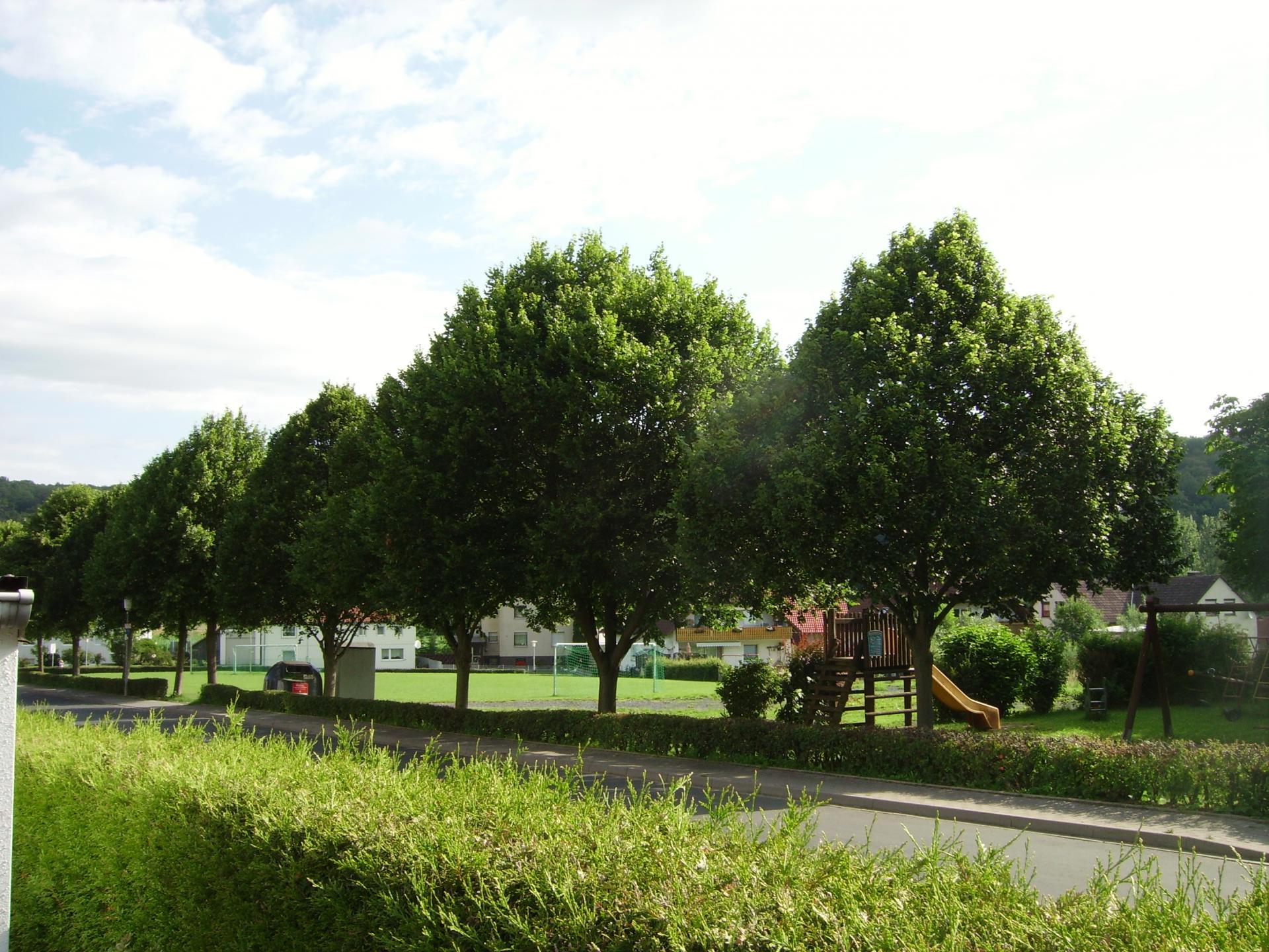 Barlissen Sportplatz