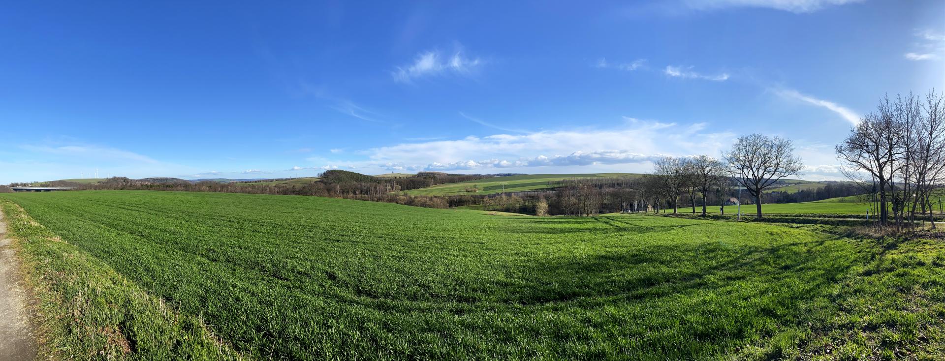 Blick zur Autobahnbrücke und die Culitzscher Felder