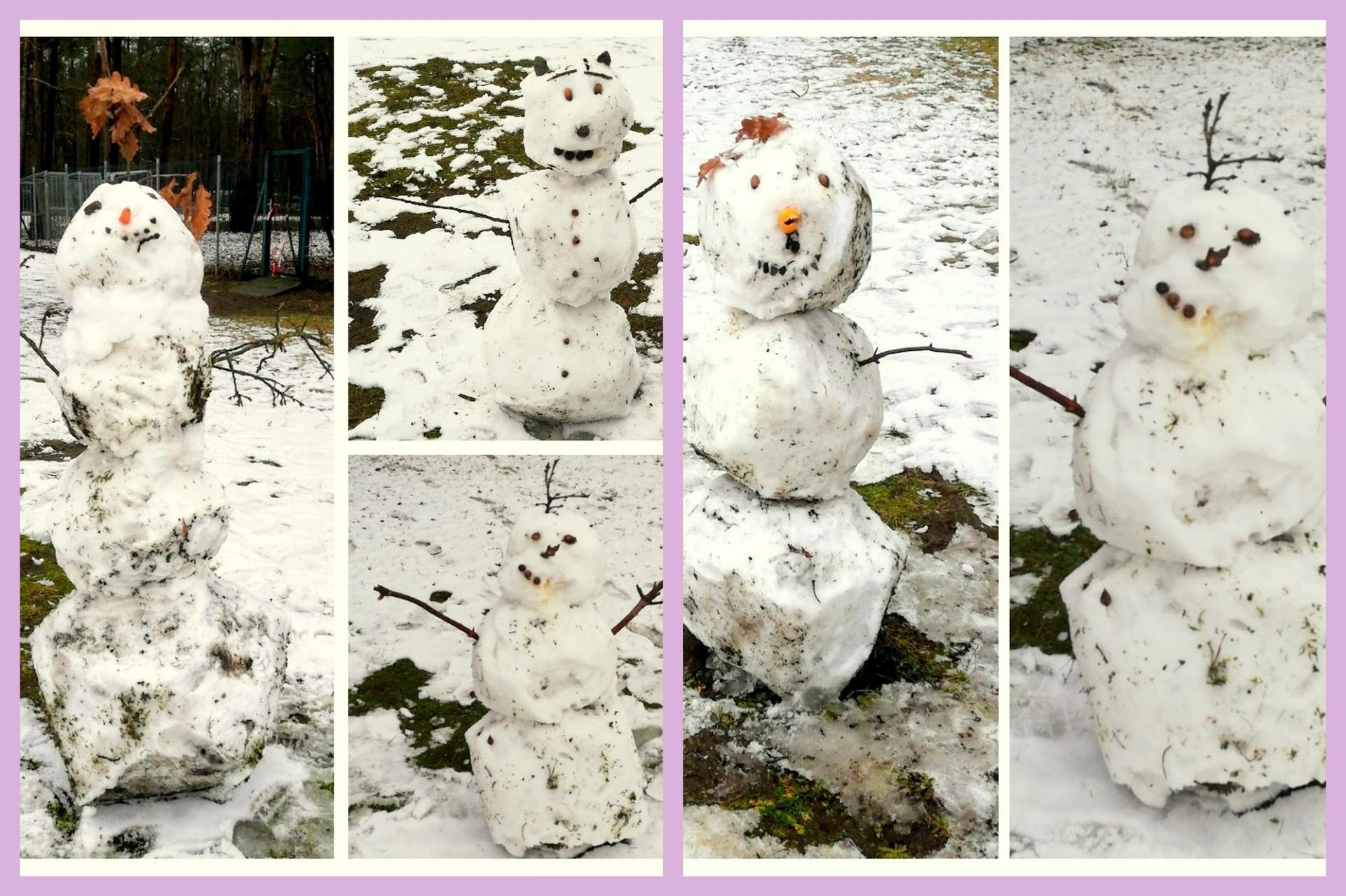 SchneemännerInnen