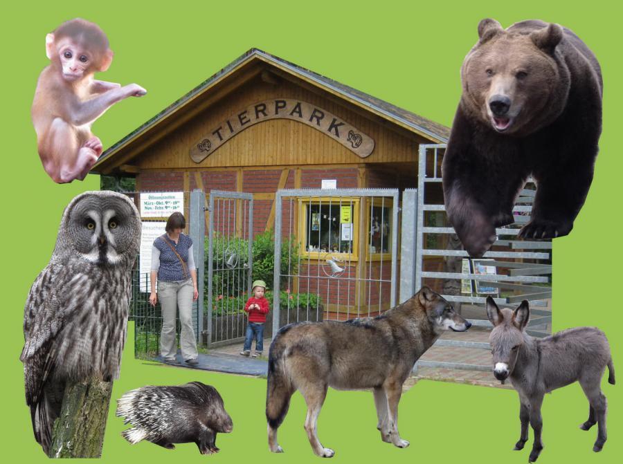 Tierpark 100