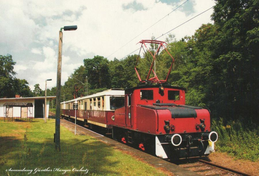 279 004/005/006+Lok 14 (EL4) der Straußenberger Eisenbahn (BKB)im Bahnhof Waldsieversdorf (Strecke Müncheberg-Buckow)