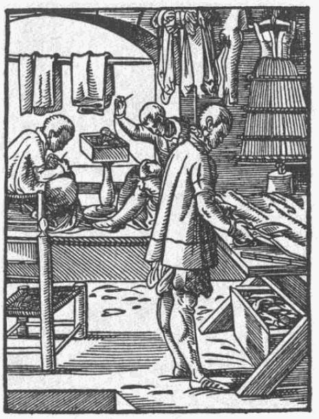 Schneider-1568