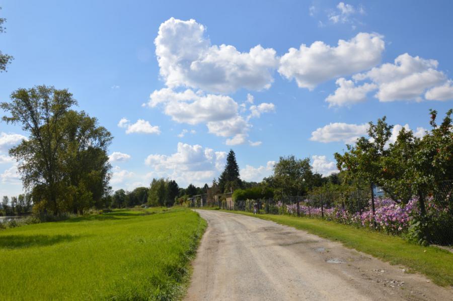 Wetter Nienburg Saale