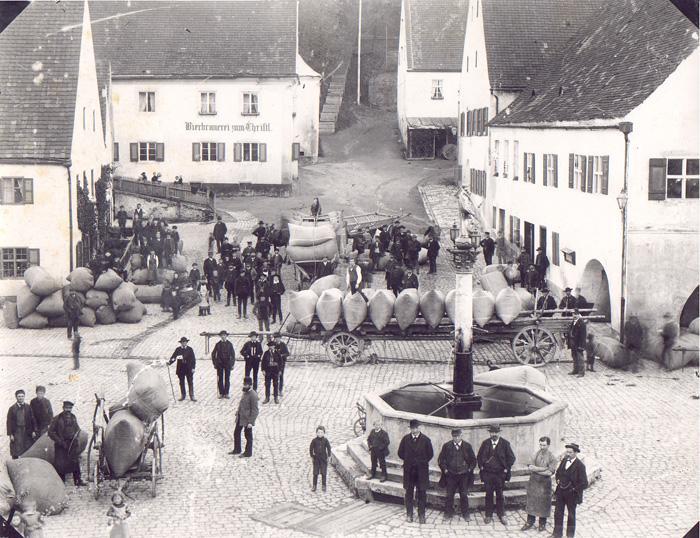 Hopfen 1888