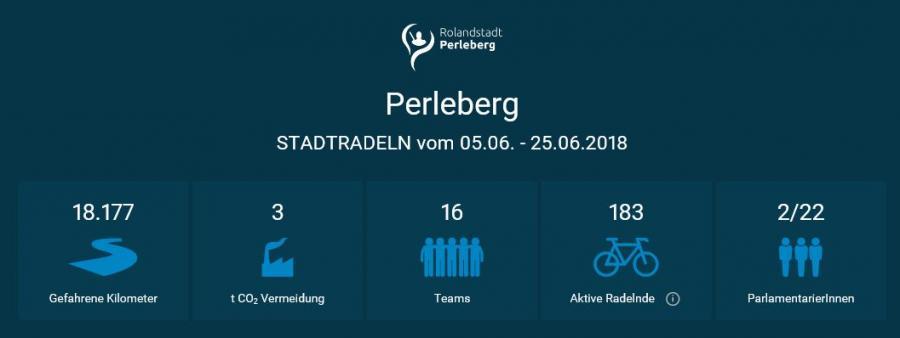 Auswertungsergebnis STADTRADELN Perleberg 2018