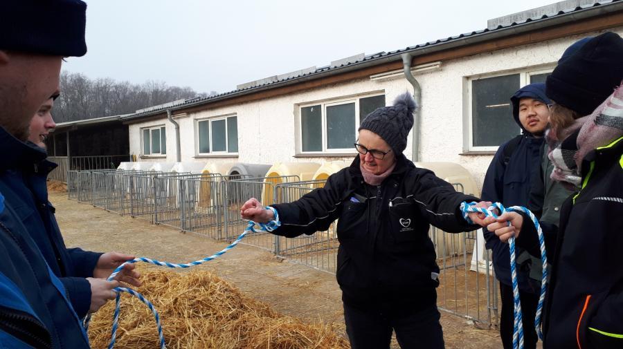 Lehrunterweisung Milchviefütterung