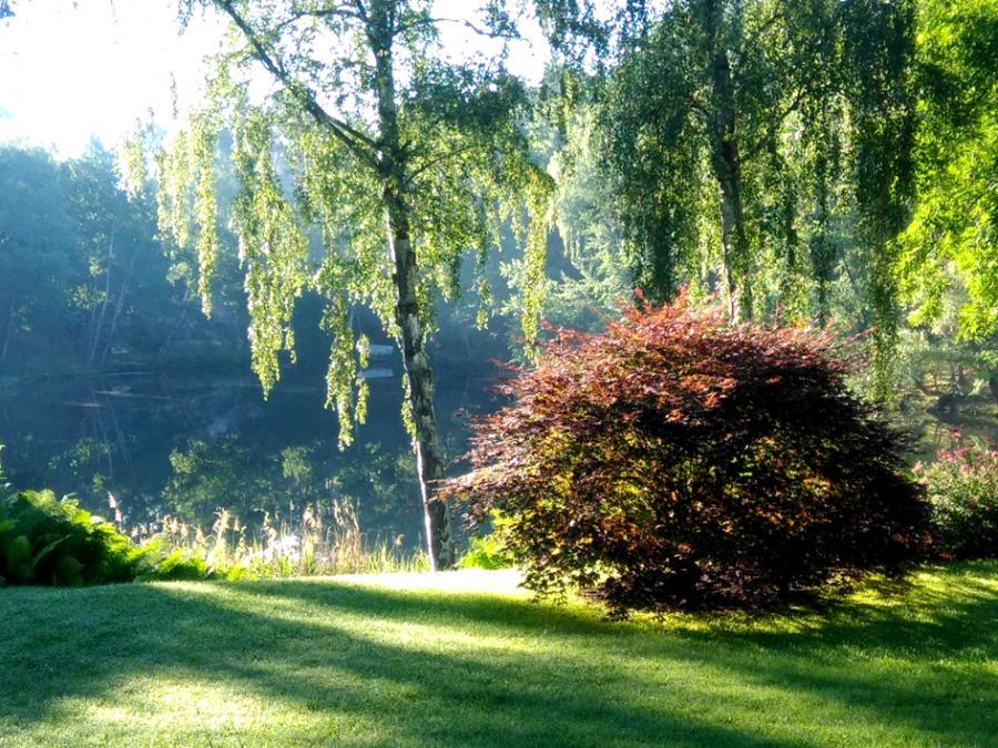 Themengarten von Ute und Gerald Bernhardt