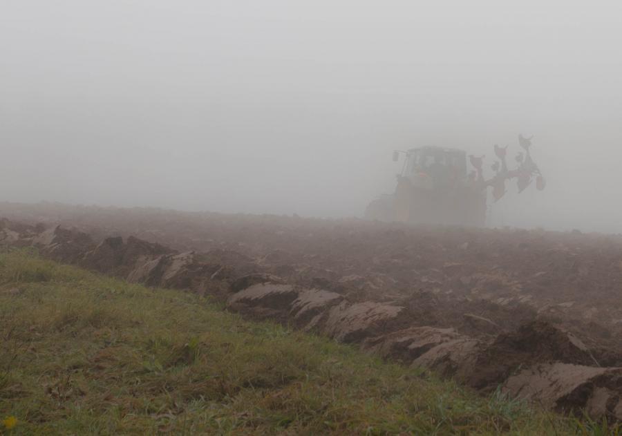 Feldbestellung im November-Nebel