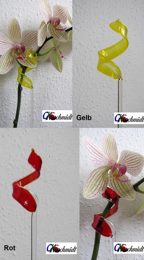 Orchideenstab Transparent, mit farbigem Blatt 3