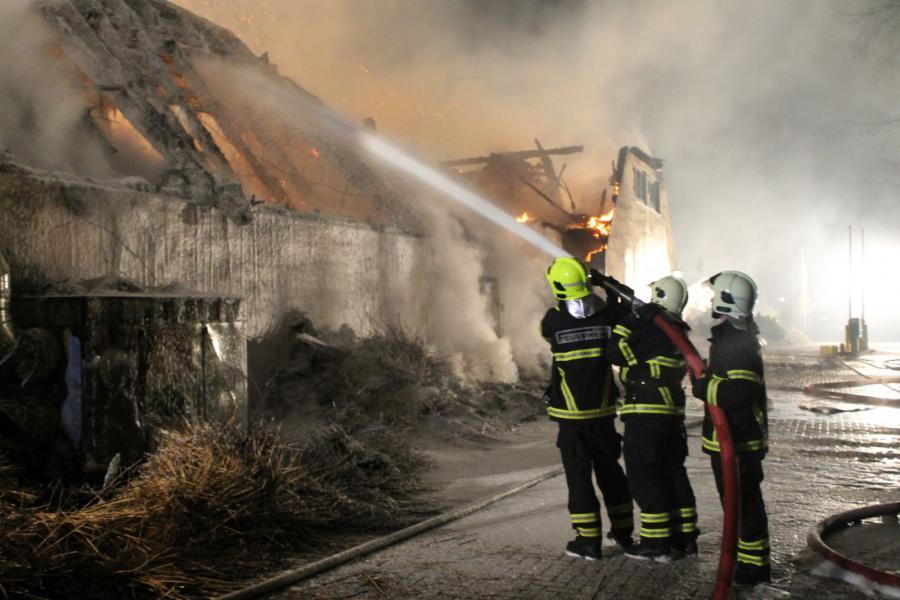 Wir suchen: Brand Gohren