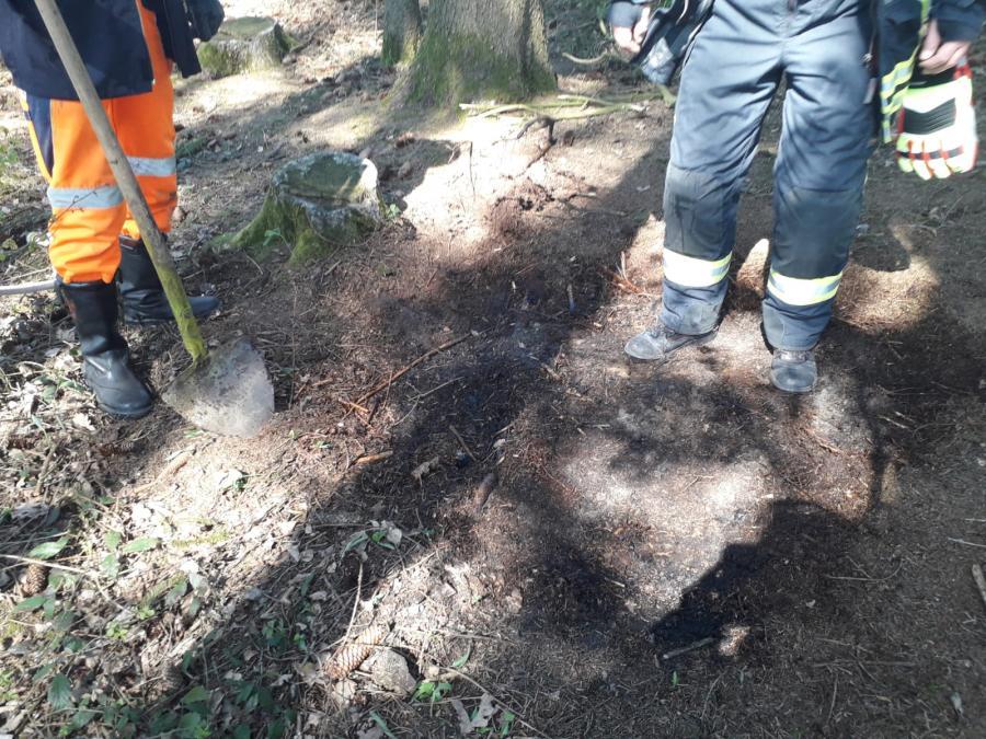 Schwelbrand im Wald 16.04.2019