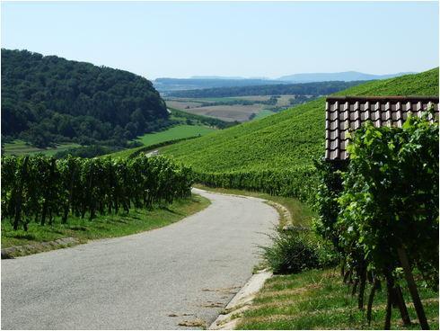 Historischer Weinort 2