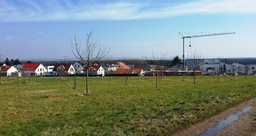 Bild zeigt den Blick über Wiesen auf das Neubaugebiet mit einem Krahn in Maintal Hochstadt; Bild: Stadt Maintal