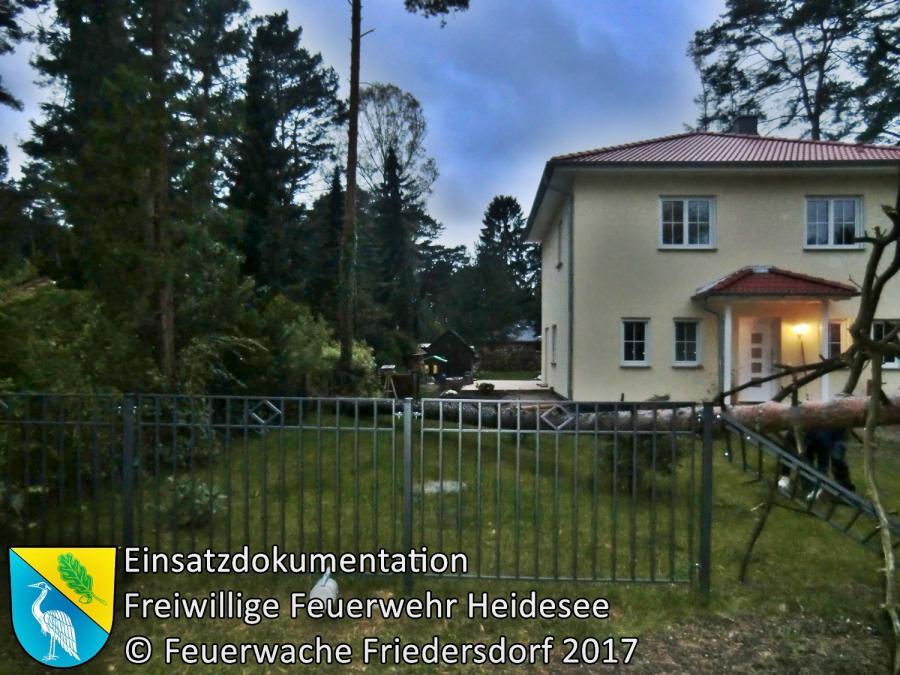 Einsatz 202/2017 | Baum auf Auto | Bindow Finkenstieg | 05.10.2017