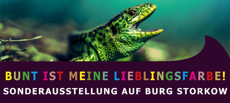 Banner Lieblingsfarbe
