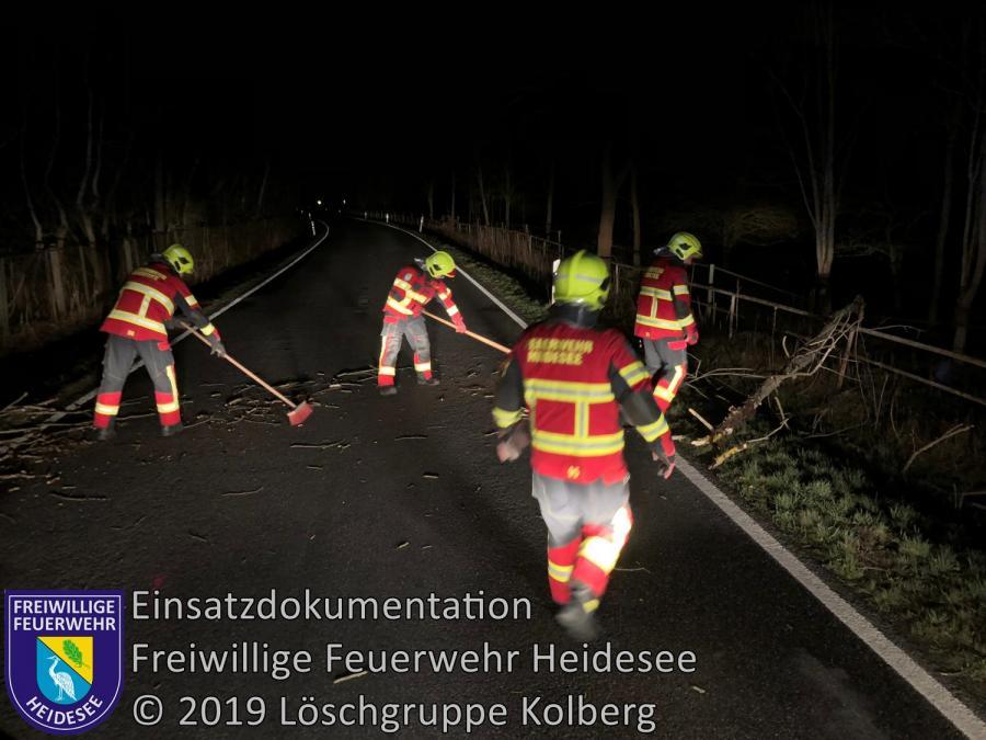 Einsatz 25/2019 | Baum auf Straße | L 39 OV Kolberg - Prieros | 15.03.2019