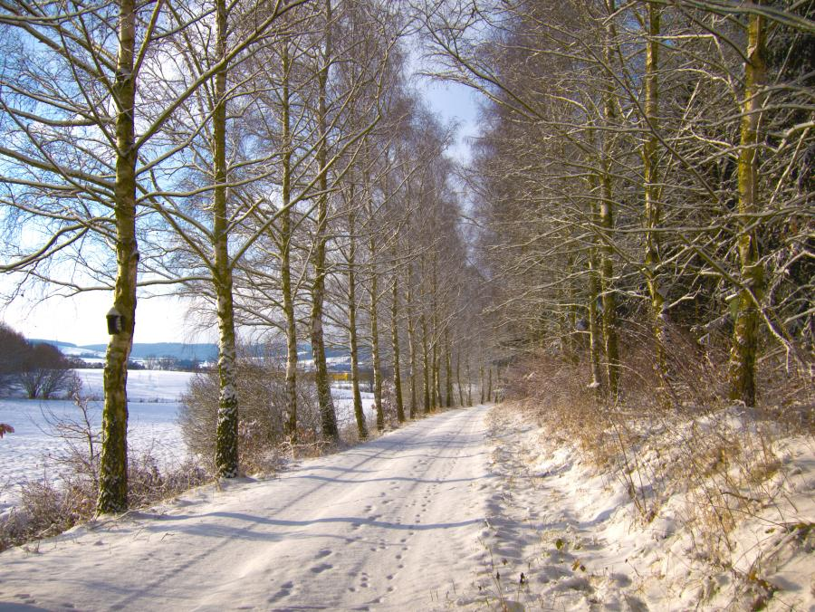 Winteridyll bei Meckbach